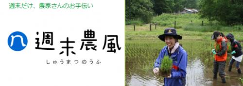 noufu_convert_20130404012124.png